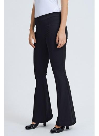 Jument Ön Arka Dikişli Ispanyol Paça Tayt Pantolon -Mint Siyah